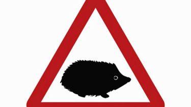 谨防刺猬:新的道路标志在路上警告小动物